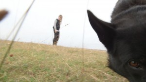 benhund-narbild-jpg
